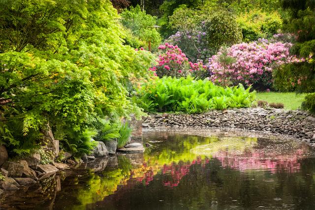 心が柔らかくほどけてゆく、世界の春絶景