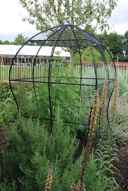 触るとキケン!公爵夫人がオープンした毒草だらけの庭園