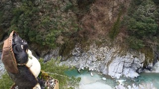 【祖谷温泉】日本三大秘湯!1日9組限定、渓谷美がすごすぎる隠れ宿