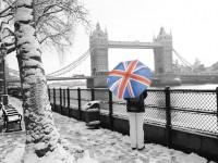 【リレー連載】在住者に聞く、イギリスに住んで良かった点、悪かった点