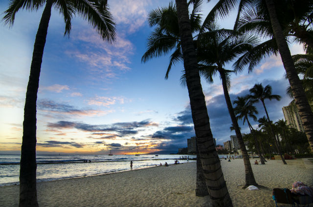 【世界美食紀行】心地よい風に吹かれながらハワイを感じる