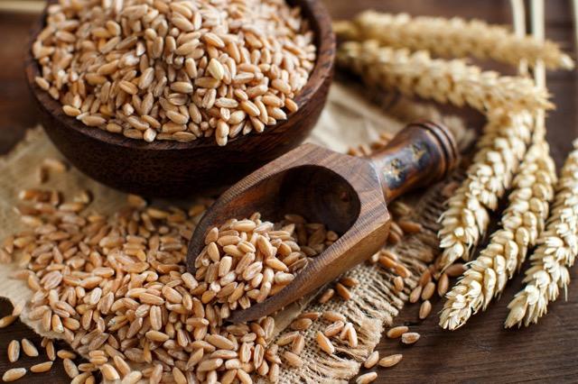 美容に、ダイエットに、定番にしたいイタリアンレシピ「麦のサラダ」