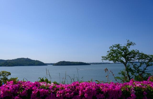 【週末旅行にも】地元の人もオススメな浜松の名所・5選