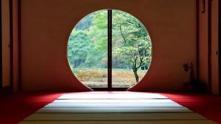 今日の絶景ヒトコト【42】雨の日の寺はいい