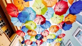今日の絶景ヒトコト【53】雨がふる、傘をさす
