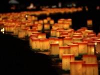 【福井】灯籠が1万基!参加者2万5千人の日本最大の灯籠流しが幻想的