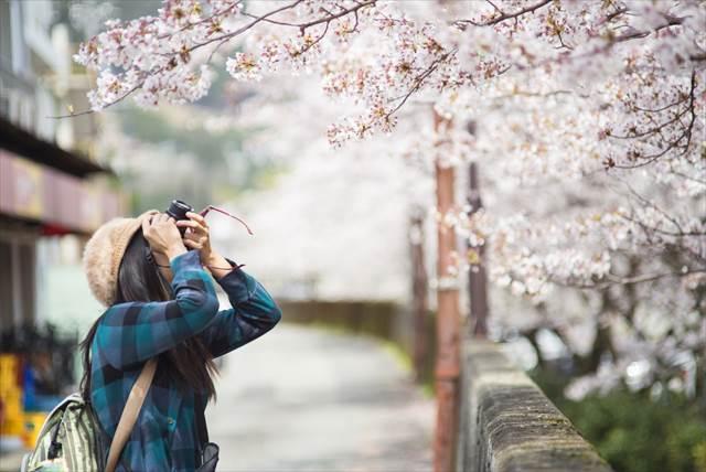 5位はアメリカ人!【日本に遊びに来てくれた外国人観光客】国別の1位は