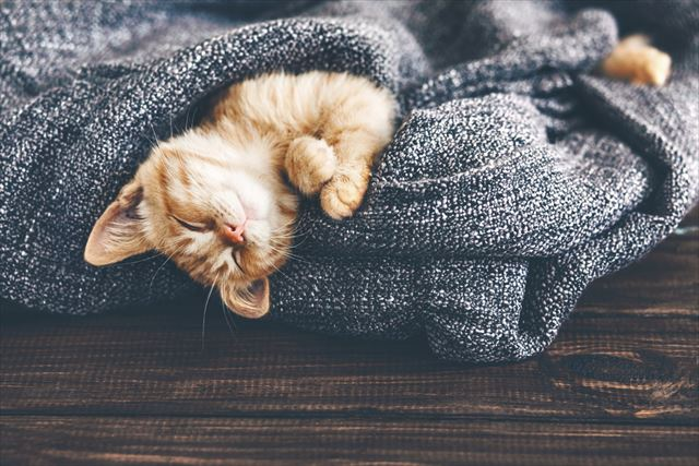 実はとっても簡単! ベッドに入ったらすぐ眠りにつくためのコツとは?