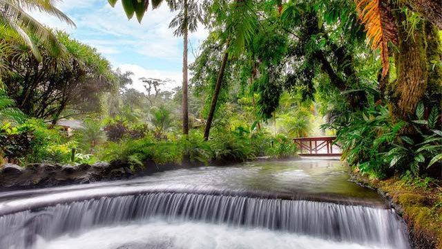 一生に一度は行ってみたい!熱帯雨林にあるすべての川が温泉の絶景リゾート