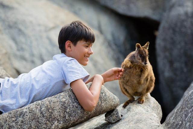 【かわいさに悶絶!】ケアンズ「癒し系動物」と「フォトジェニック旅」<PR>