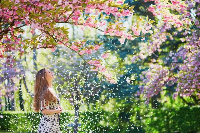 ホテルダイニングで小さなお花見 ランチで桜、カクテルで桜