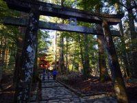 運だめしもできる!日光「東照宮」裏のパワースポット「滝尾神社」
