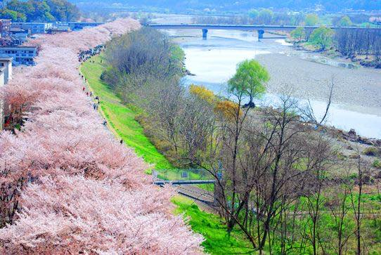 今週どこ行く?東京都内近郊おすすめイベント【3月27日〜4月2日】無料あり
