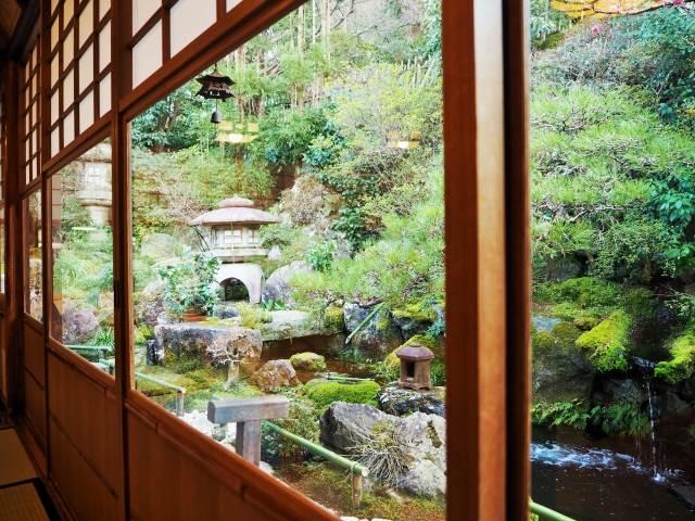日本庭園を愛でながら名物のとろとろ「草わらびもち」を、京都・高台寺「洛匠」
