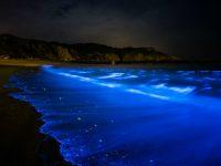 台湾の離島・馬祖で鑑賞する季節限定の幻想的な光景「青の涙」