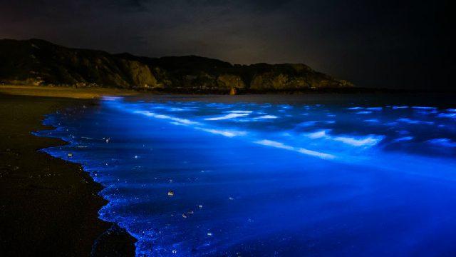 台湾の離島、馬祖で鑑賞する季節限定の幻想的な絶景「青の涙」【TABIZI