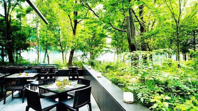 【大手町】都心の森に癒される、アマン東京の寛ぎのアフタヌーンティー