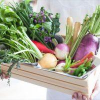 新鮮、無農薬野菜も!女性に嬉しい自然を感じる「お台場のホテルビュッフェ」