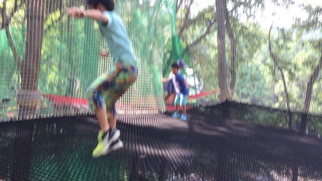 【日本初NEWオープン!】森の空中アスレチック「パカブ」に行ってきた