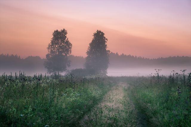【日本から一番近いヨーロッパ】「沈まぬ真夜中の太陽」と「自然の恵み」の国フィンランド