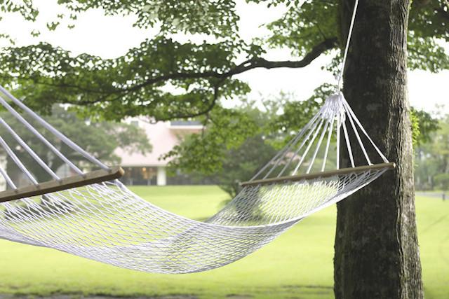 【箱根夏の日帰り旅】森のコテージでハンモックに揺られる優雅な休日