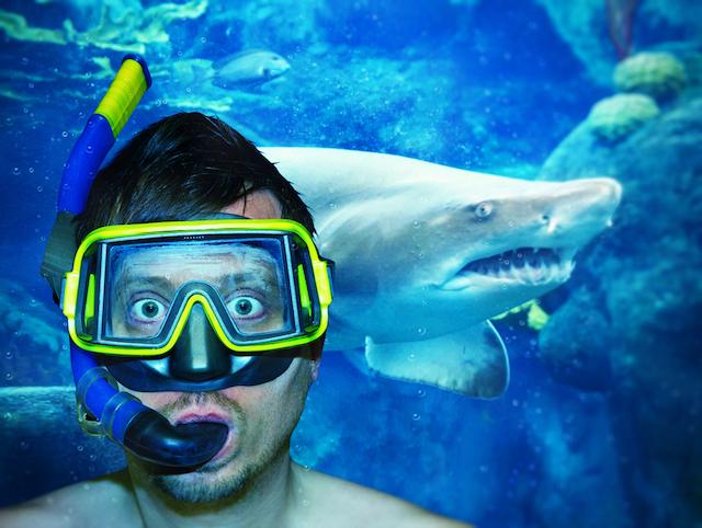 サメより危険!?命に係わる自撮りシチュエーション