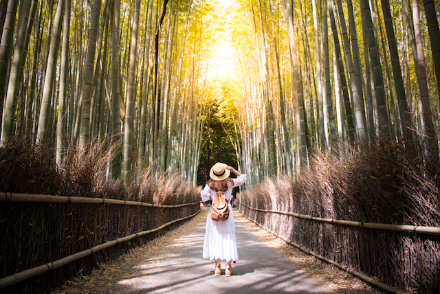 【日本の不思議】世界一ひとり旅率が高い、おひとりさま好きな日本人