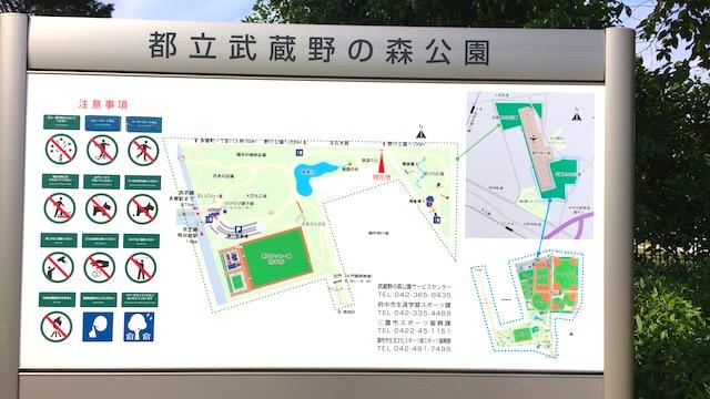 飛行機の離着陸を眺められる穴場公園。調布飛行場隣の「武蔵野の森公園」