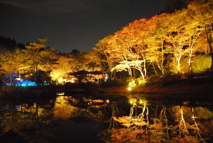 六甲の紅葉とアート作品に囲まれて「ザ・ナイトミュージアム」