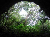 地底にぽっかりと口を開ける大地の裂け目ヤジャーガマ探検!【沖縄・久米島】
