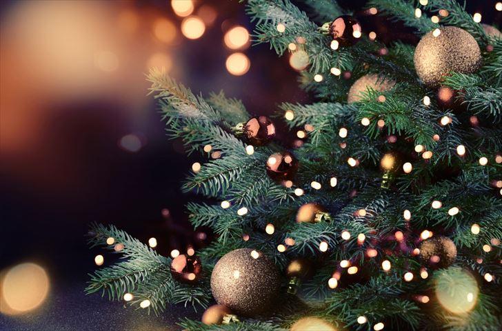 ヴィタメールのクリスマス限定プレート『ノエル ショコラ デセール』が登場