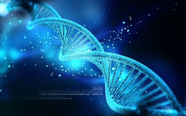 国際恋愛はDNAにとってハッピーだった?新しい試みDNA婚活を体験してきた