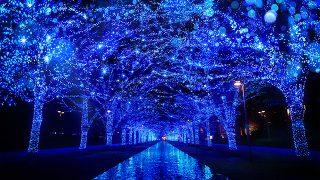 渋谷に「青の洞窟」が帰ってきます!2017年も「青の洞窟 SHIBUYA」開催決定!