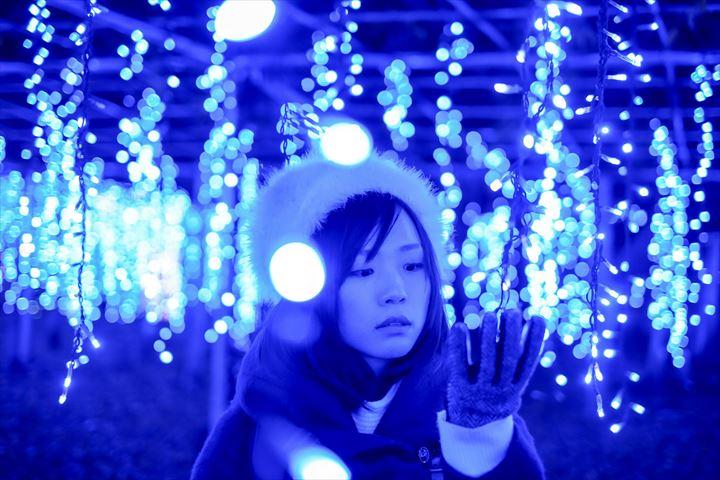 あしかがフラワーパーク『光の花の庭』がイルミネーションアワード第1位!