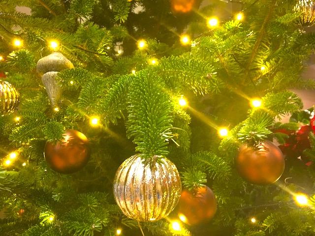 【今日のアドベントカレンダー】12月12日「忙しい、ということ」