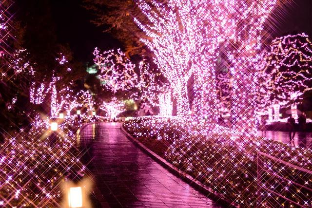 """ハートの装飾を加えた、ピンクの光で""""まち""""を彩る「新宿テラスシティ イルミネーション '17-'18」開催"""