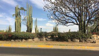 【メキシコ現地レポ】日系自動車企業が急増 グアナファト州イラプアトってどんなところ?