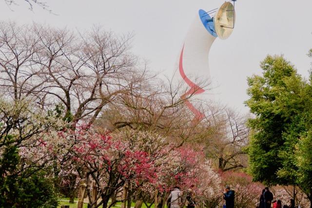 次の大阪観光はここ!文化と自然が楽しめるレトロな大阪、万博記念公園