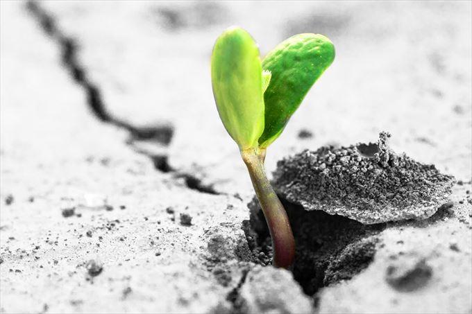 未来特集 始める前から諦めてない?大人にこそ必要な自分の欲求に素直になるという事