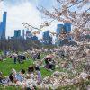 【春のニューヨークで何を着れば良い?】3〜5月の天気・気温、現地の服装