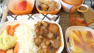 搭乗ルポ】エバー航空で台湾旅行(成田~桃園)!機内の様子や機内食
