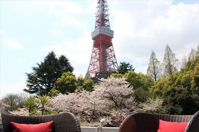 今週どこ行く?東京都内近郊おすすめイベント【3月15日〜3月21日】無料あり