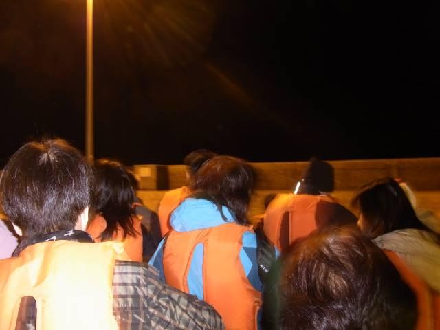ホタルイカの旬が到来!富山の漁まで追いかけて知った意外な事実!