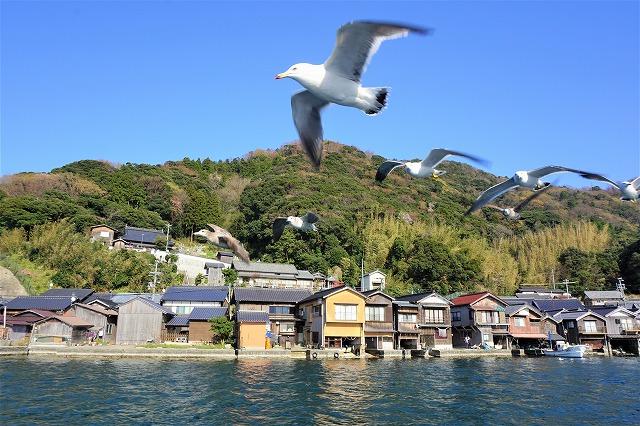 「日本のヴェネツィア」舟屋の町・伊根で知らなかった京都の魅力に出会う