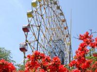 【チープに旅するGWの穴場】群馬県伊勢崎市のりもの70円からの遊園地とカオスな赤い鳥居
