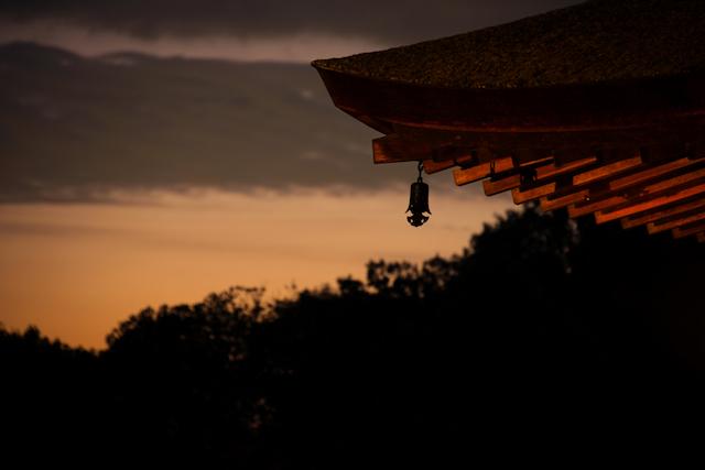 【ちょっと面白い都道府県ランキング】ファーストキスの年齢が最も遅い県は?奥手なのには理由がある。