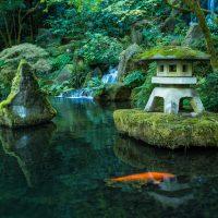 GW前に予習!超簡単な日本庭園の楽しみ方2ステップ
