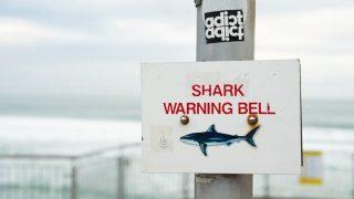 ニュージーランド治安情報!安全ですが日本とはここが違う!注意表示も独特。