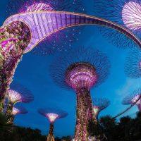 一日で世界旅行も。たった一日でシンガポールのおいしいところを完全制覇