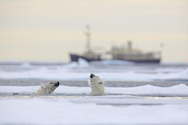不意に海氷が割れ20kmも吹雪で飛ばされる死の世界【北極点】旅行ガイド